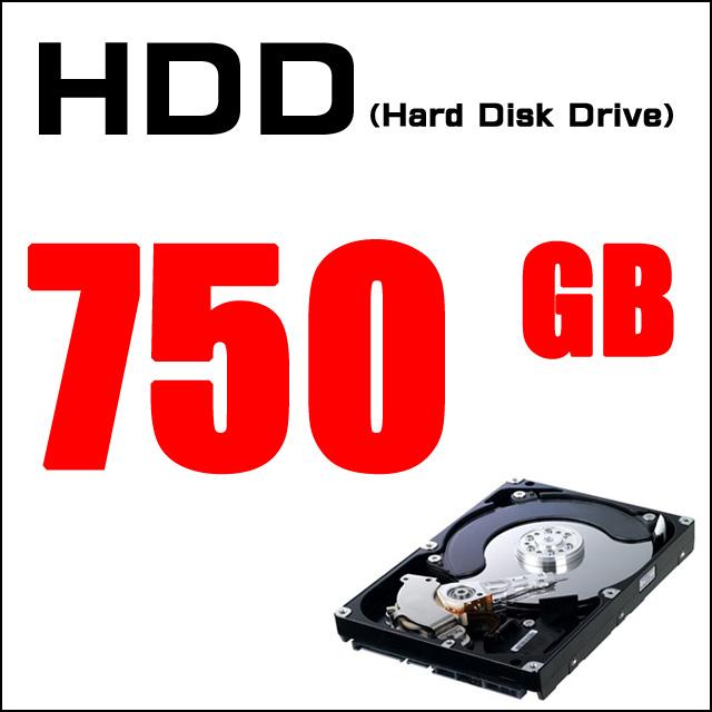 ストレージ★容量たっぷり! ハードディスク750GB