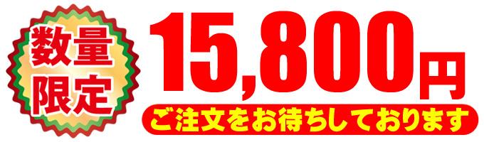 15800円★税込価格・送料無料・安心3ヶ月保証
