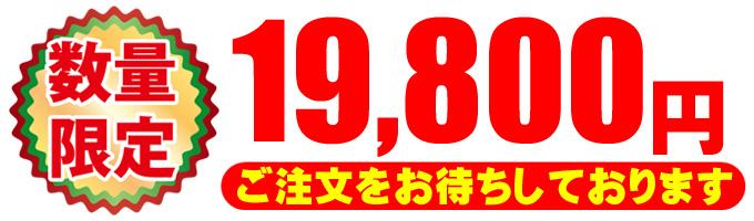 19800円★ご注文をお待ちしております